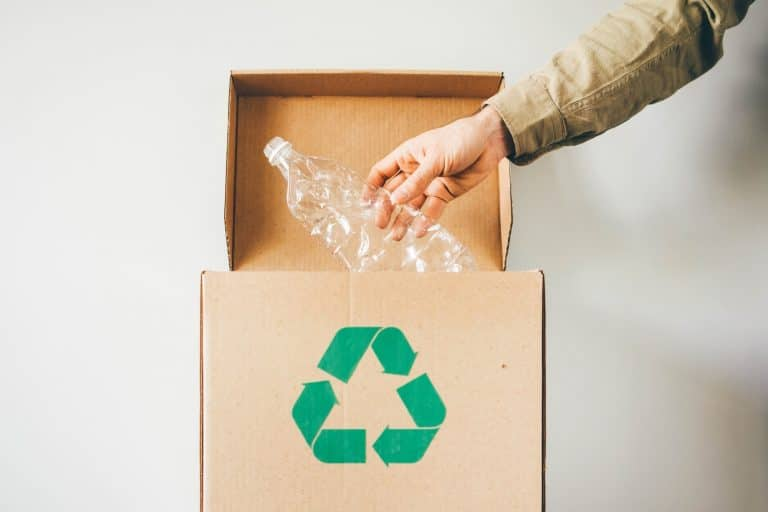 Throw plastic bottle into the recycling box.